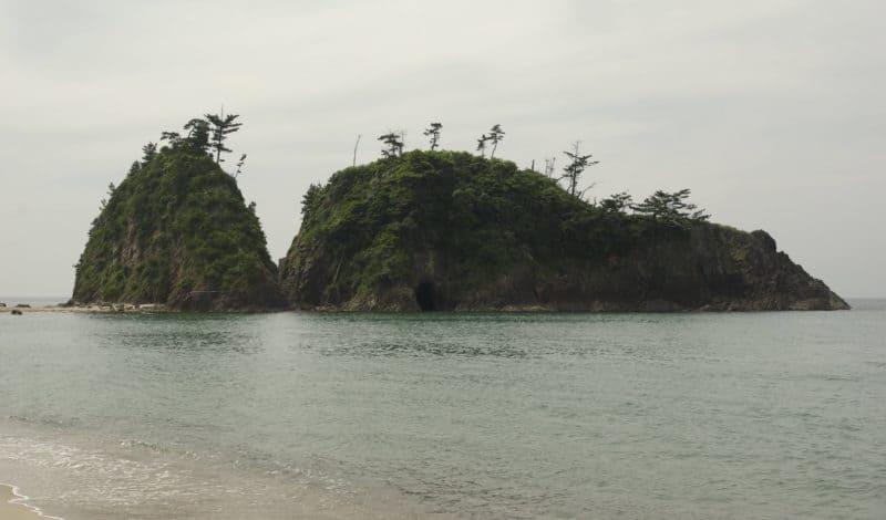 linkinsel