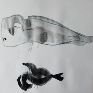 Drawing Paradiesvogel